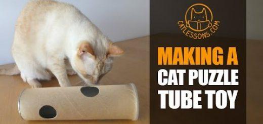 ポテチの筒でDIYする猫オモチャ、香りと音で猫も夢中に