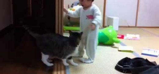 赤ちゃんあやすベビーシッター猫、猫好きへの英才教育を施す