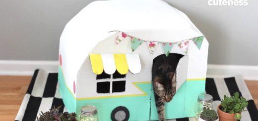 段ボールでもここまでかわいく、ひと手間加える猫ハウスの作り方