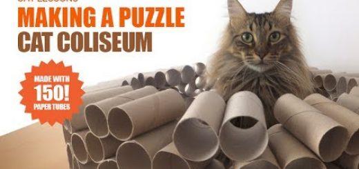 トレパの芯とラップの芯と、集めてくっつけ猫要塞に
