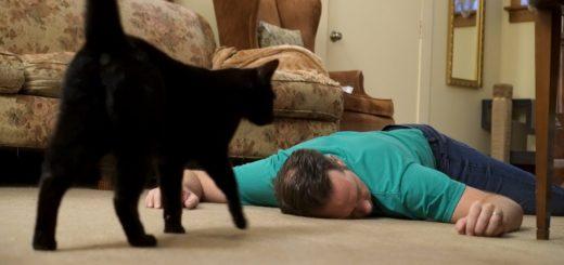 死んだふりした飼い主を気遣う猫たち、指を舐め舐め早く起きろと