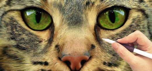 目を奪われるその緻密さに、iPad ProとApple Pencilで描く猫の顔