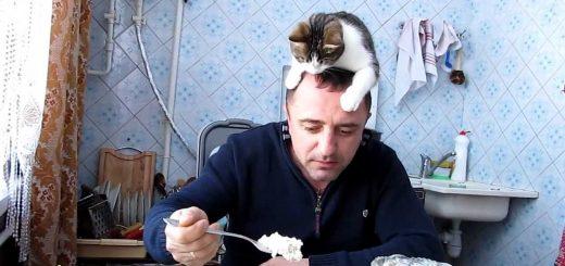 飼い主の頭の上からアピールする猫、首尾良くおすそ分けをゲット