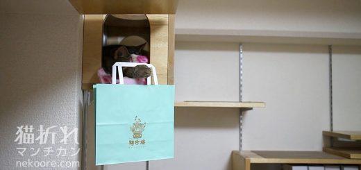猫の手のフックに掛かる紙袋、燦然輝く老舗のマーク