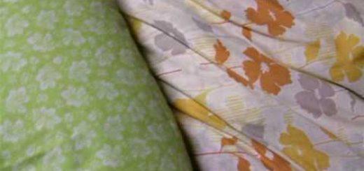 お布団に挟まる猫のミルフィーユ、上に2匹で下に3匹