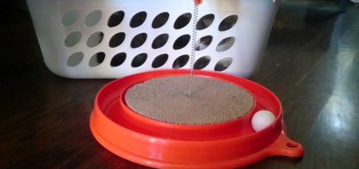 飽きられた猫のオモチャの復活テク、洗濯カゴに猫を入れるだけ