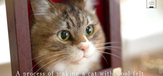 猫サイズの額からひょっこり猫の顔、違和感まったく仕事せず