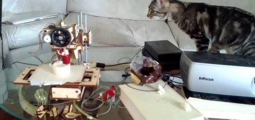 3Dプリンタ怪しむキジトラ猫、警戒しすぎて猫背が伸びる