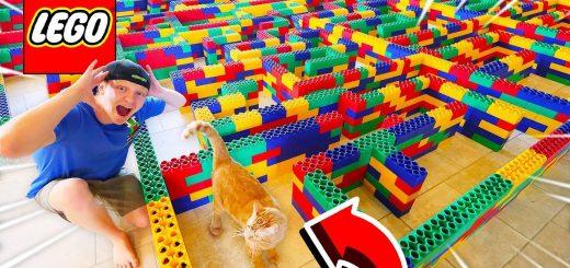 猫用に巨大なレゴで作った迷路、猫より先に男子が興奮